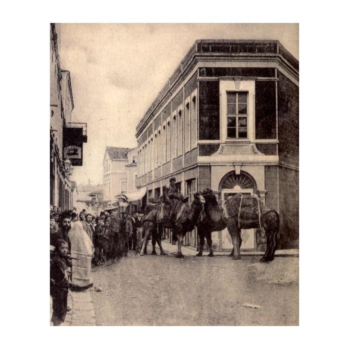 Καμήλες 1911